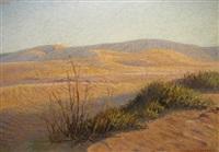 desert scene by axel francis zeraava eriksson