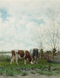 cows at pasture by jan vrolijk