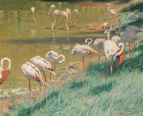 flamingos by wilhelm friedrich kuhnert