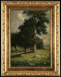 old tree, summer by joseph de camp