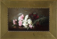carnations by anna eliza hardy