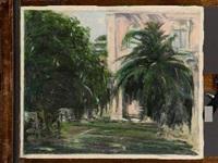 giardino con palme by vincenzo nucci