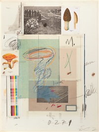 natural history part i (mushrooms) by cy twombly