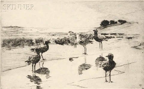 black breast plover by frank weston benson