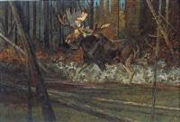 a moose by dennis anderson
