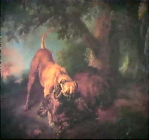wildschwein unter einer eiche von einem hund hingestreckt by juriaen jacobsz