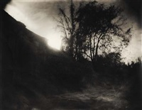 untitled - georgia (from mother land) by sally mann