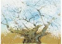 cherry blossom by chinami nakajima