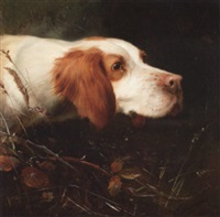 an english setter by thomas william earl