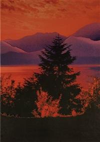 untitled (abete, lago rosso) by stefano arienti