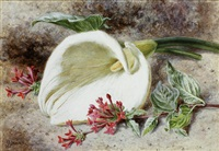 still life of flowers; and companion by helen cordelia angell