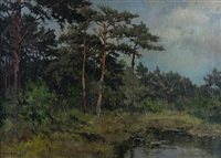 summer landscape by dorus arts