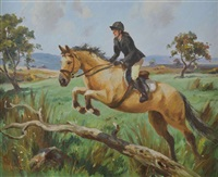 three day eventer by donal mcnaughton