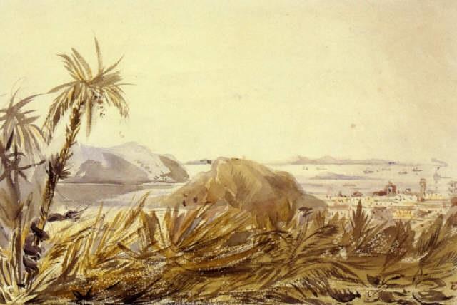 voyage dans lamérique du sud by édouard quesnel