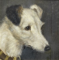a portrait of a fox terrier by edward aistrop