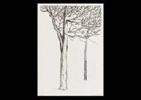 2 trees by tetsuo komai