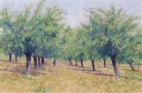 summer orchard by brett mcentaggart