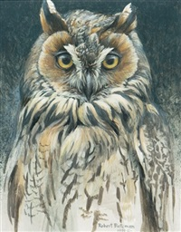 owl by robert bateman