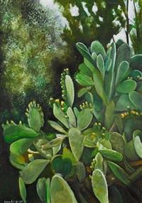 cactus by fouad agbaria