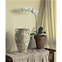 orchid and vase by renato meziat