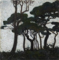 les pins by marko rasica
