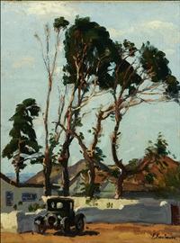 eucalyptus trees in laguna beach, calif. by ferdinand kaufmann