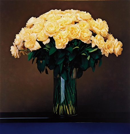 roses by robert mapplethorpe