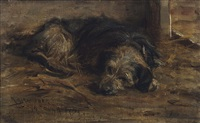 a sleeping lurcher by robert l. alexander