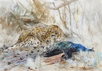 leopard and peacock by cuthbert edmund swan