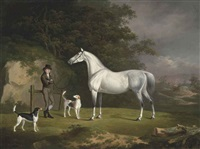 a grey hunter with a groom and two hounds in a wooded landscape by charles towne