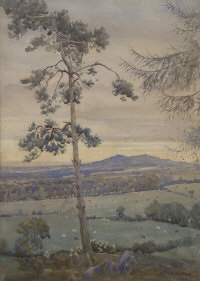 from near stepaside by joseph poole addey