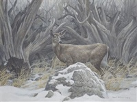 relics of the old days - whitetailed deer by robert mclellan bateman