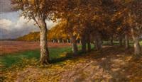 herbstliche platanenallee im schlosspark von alcsuth/ungarn by olga wisinger-florian