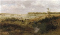 a shepherd and his flock in a dune landscape by marinus boks