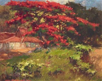 kampong house with royal poinciana by gerard adolfs