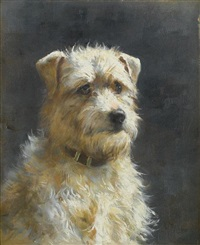 a terrier by alfred duke