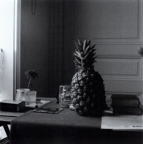 pineapple still life with pineapple by peter puklus