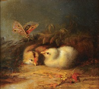 spring chicks and butterfly by mary russell smith
