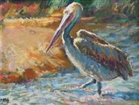 pelican by zakkie (zacharias) eloff