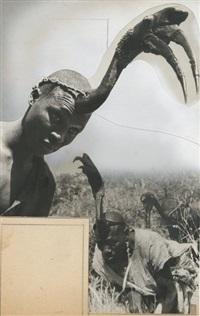cameroun: types avec coiffe de calao by roger parry