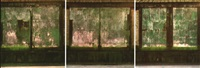 les trois portes vertes (triptych) by didier lafleur