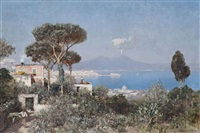 a boy and a donkey on the way to market above the bay of naples by edmund berninger
