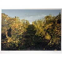 golden vines by ken danby