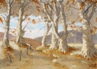 wicklow landscape with trees by mabel young