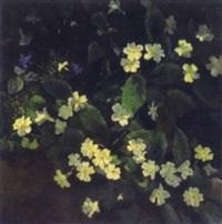 hazel wood flowers by janetta mellet