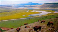 spring along the yellowstone by gary ernest smith