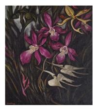 orquídeas by roberto montenegro