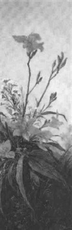 wiesenblumen by paula freiin von wachter