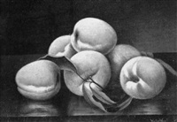 peaches on a table by victor vogt