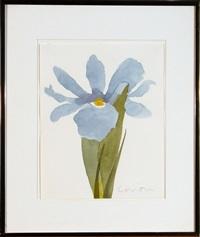 blue iris by sister corita kent